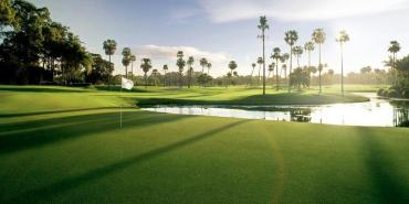 Sanctuary Cove (The Palms Course)