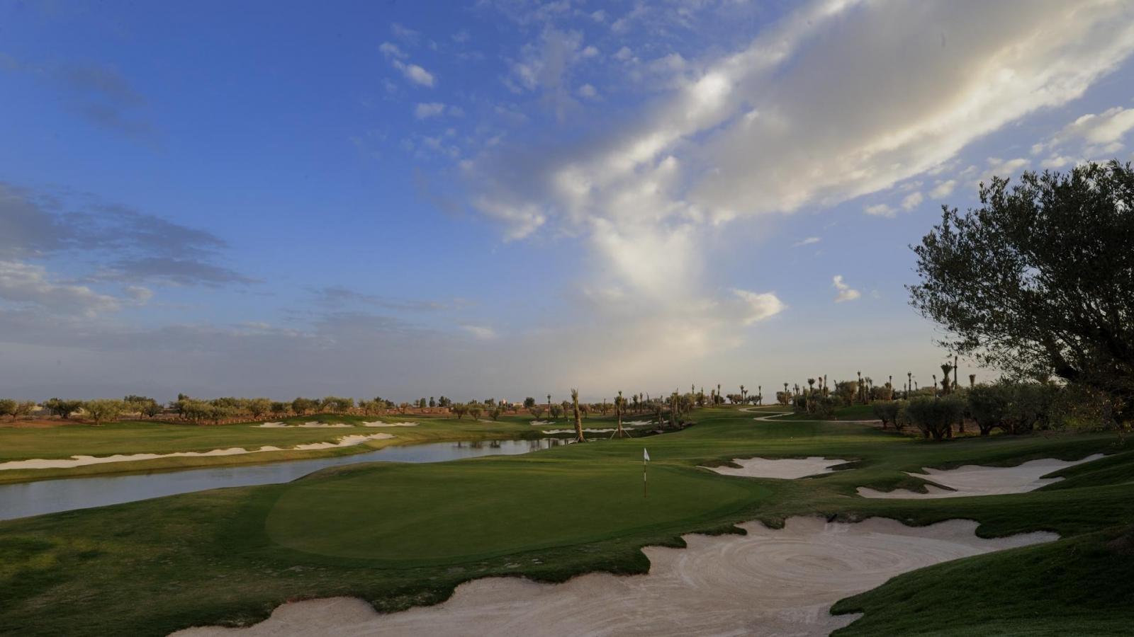 Royal palm golf country club book golf online golfscape - Golf cart rentals garden city sc ...
