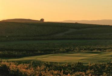 Chardonnay Golf Club