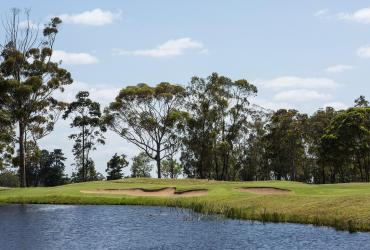 Wedgewood Golf & Country Estate