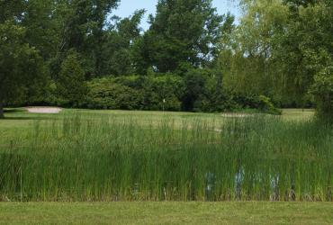 Simcoe Shores Golf & Country Club