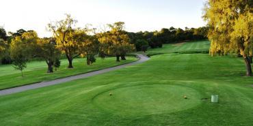 Randpark Golf Club (Firethorn Course)